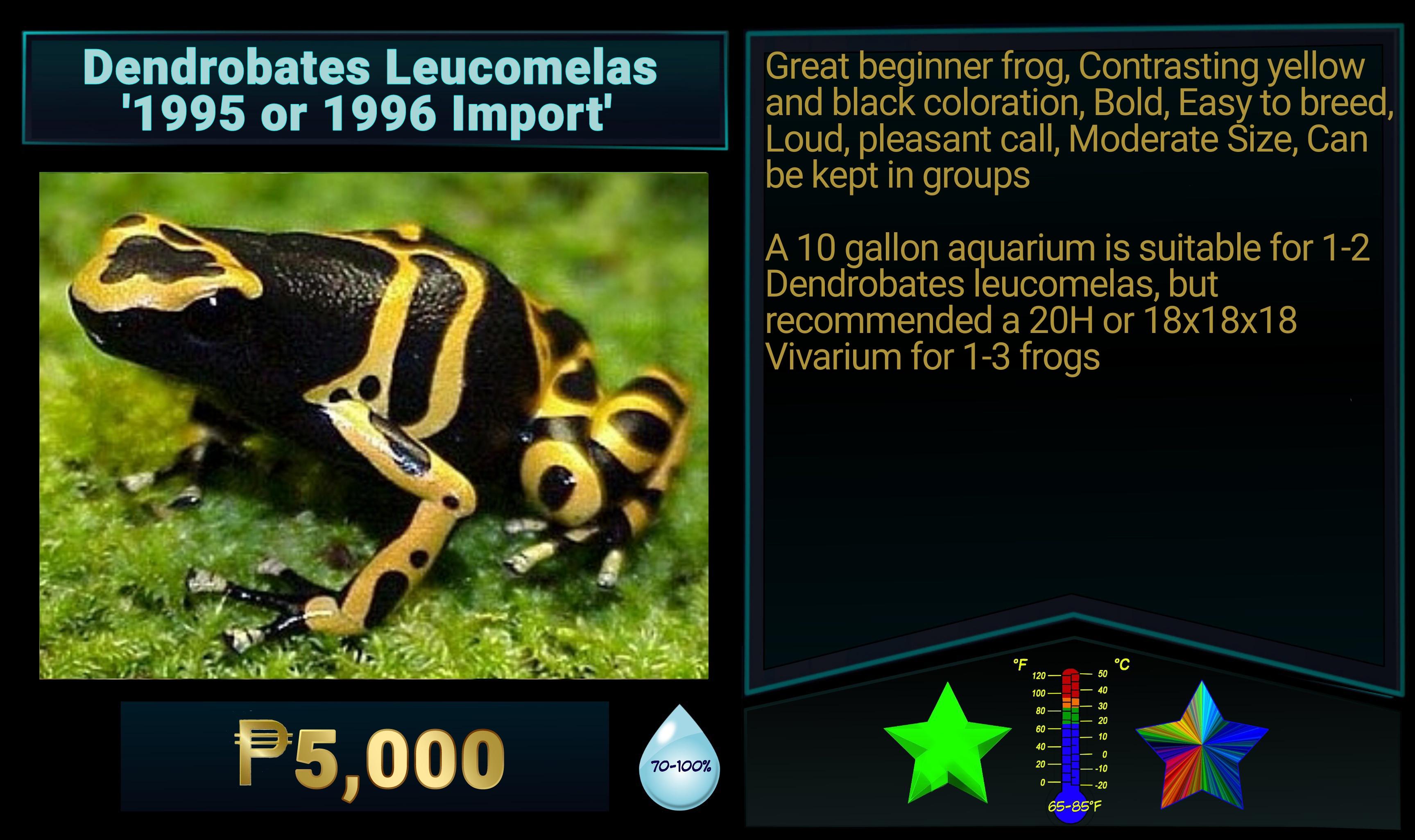 Dendrobates leucomelas 1995-96 import